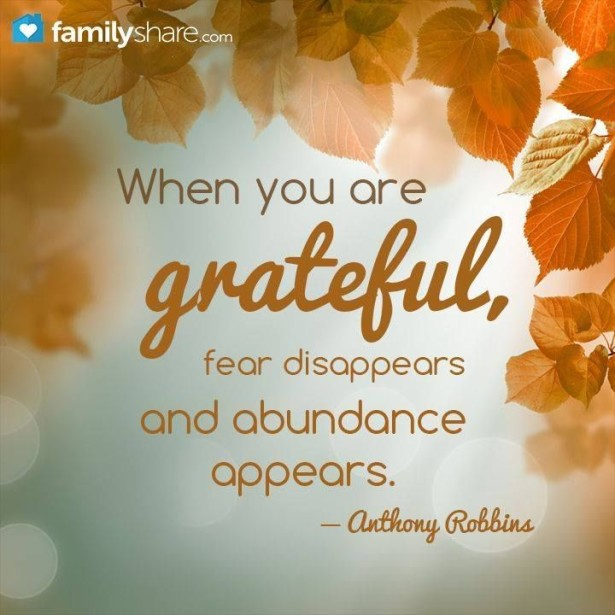 17 - Gratitude