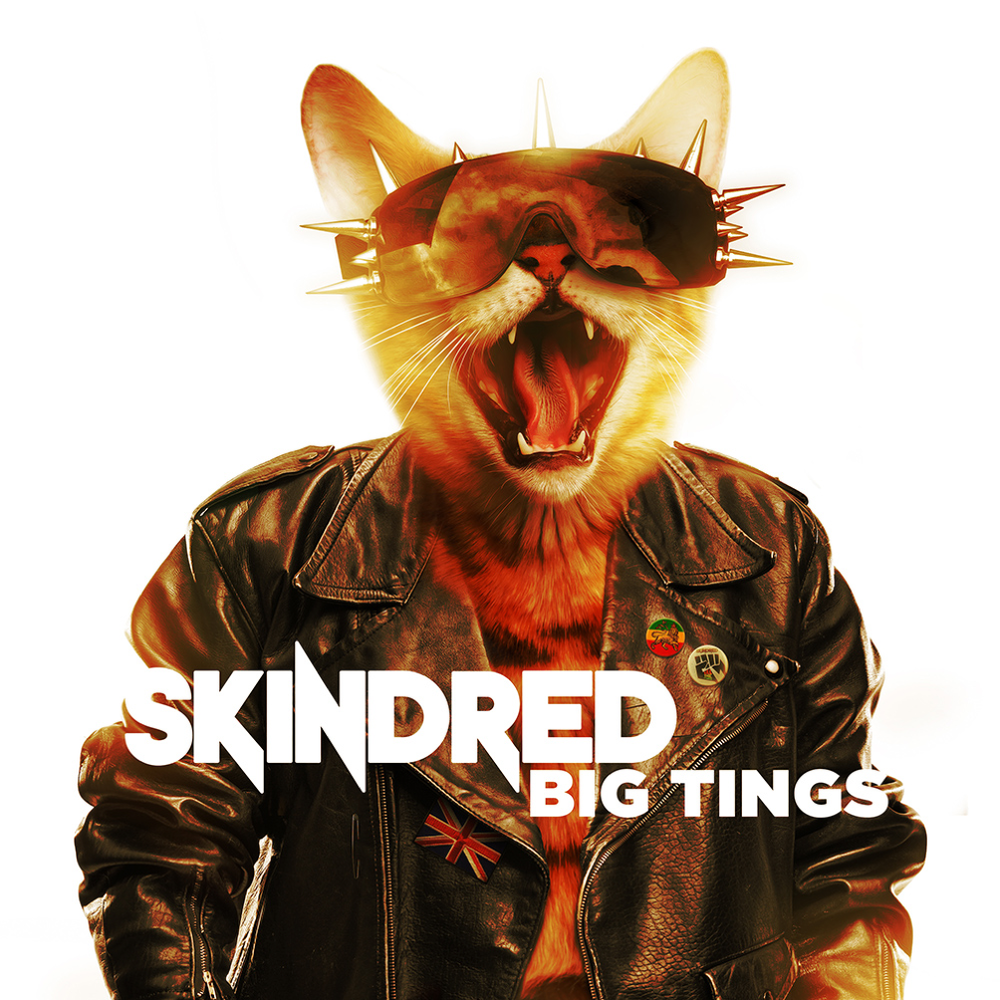 37. Skindred - Big Tings (Reggae Rock/Hard Rock)