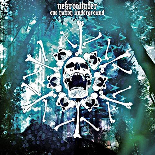 28. Nekrowinter - One Nation Underground (Blackened Groove Metal)