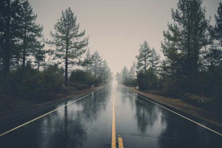 negative-space-rain-road-forest-veeterzy-thumb-1-768x512.jpg