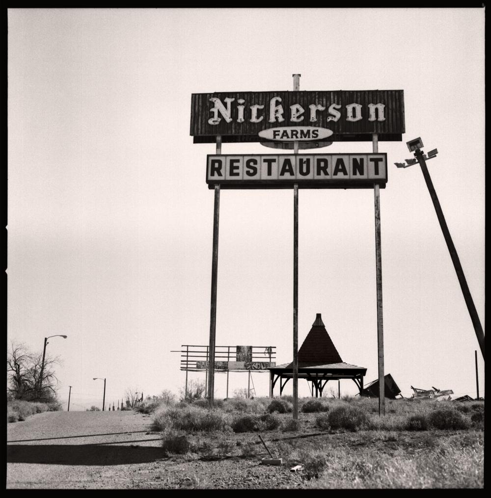 Sonoran Desert, 2016