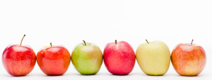 Apple assortment. From left to right Royal Gala, Kanzi,Granny Smith,Pink Lady,Golden and Fuji