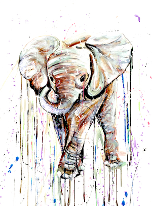 Limited Edition: CALF ELEPHANT III, £750