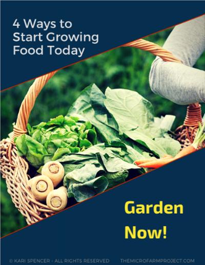 Garden Now!.png