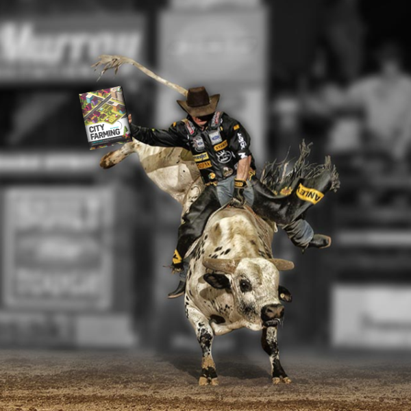 rodeo.png