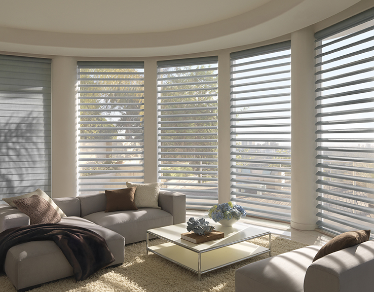 Hunter Douglas shades in living room