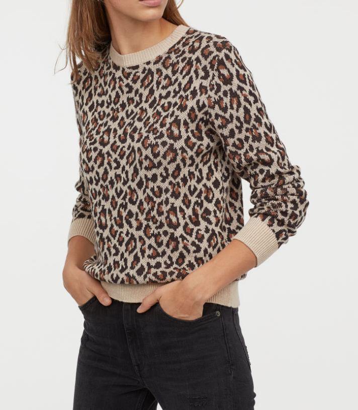 H&M Leopard Sweater