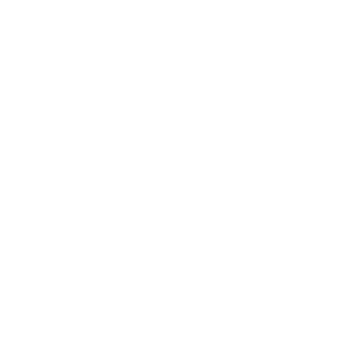 The Simplistic Chic