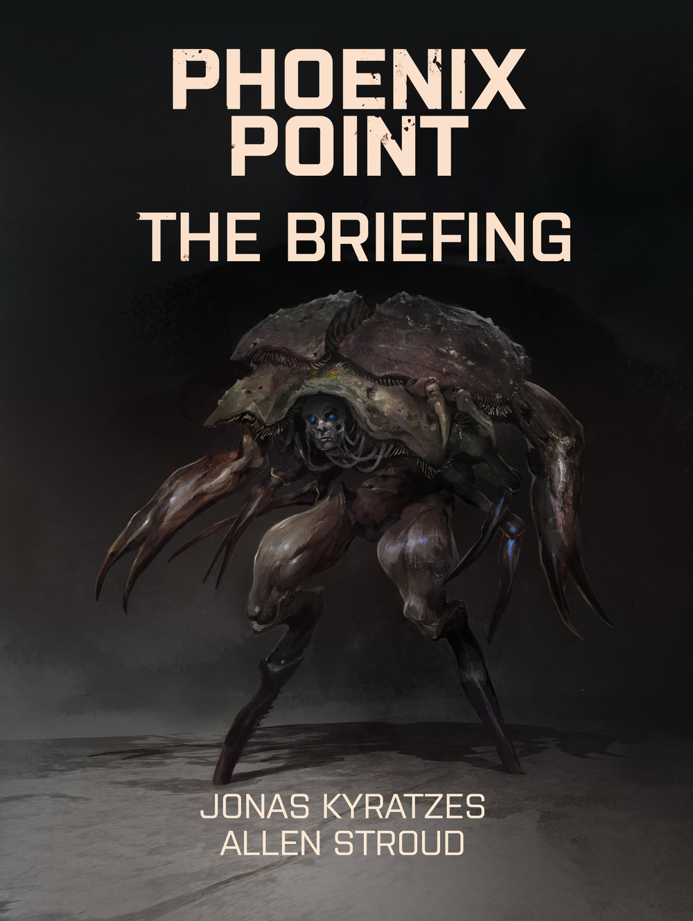 The-Briefing-iBooks.jpg