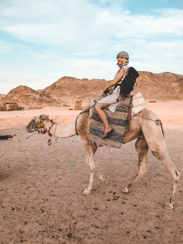 camelride in the desert of hurghada.jpeg