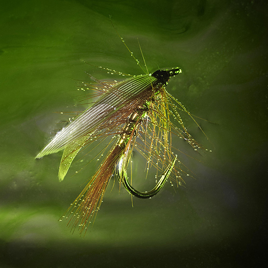 www.web_wheatcroft_flies-044.jpg