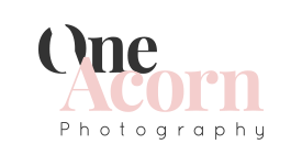 One Acorn Photography