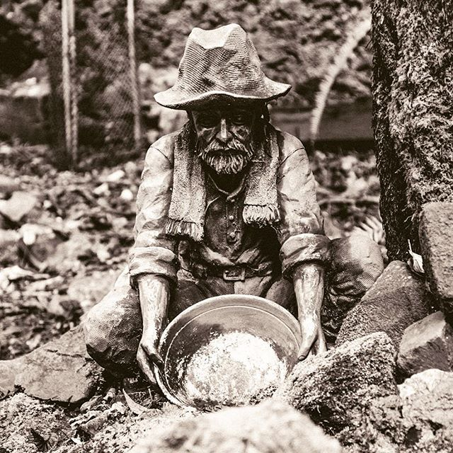 When you getting gold, why go for tamba? . . . . #stilllifephotos #closeupphotography #statuesofinstagram #goldmining #monochromephotography
