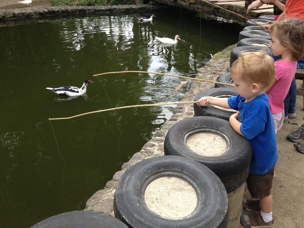 Aaker Fishing