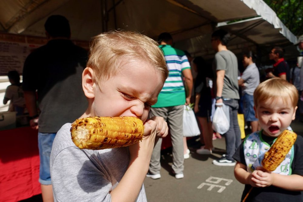 ozzie vs corn