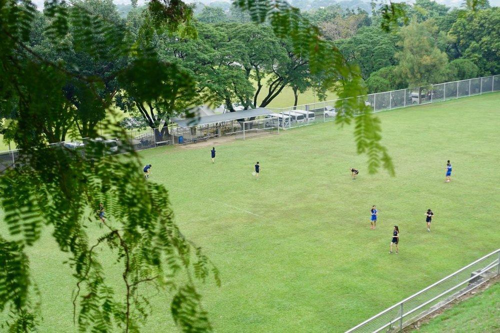 campus scene.jpg