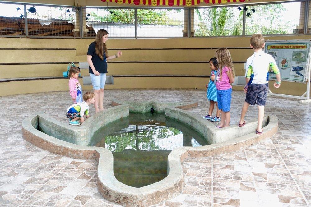 healing pool.jpg