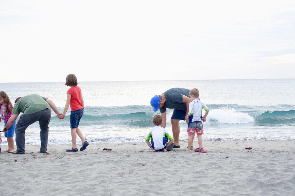 beach release l.jpg