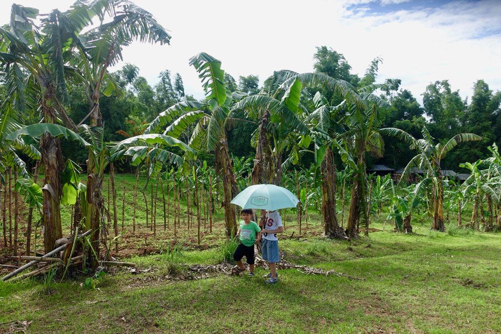 farm tour v.jpg