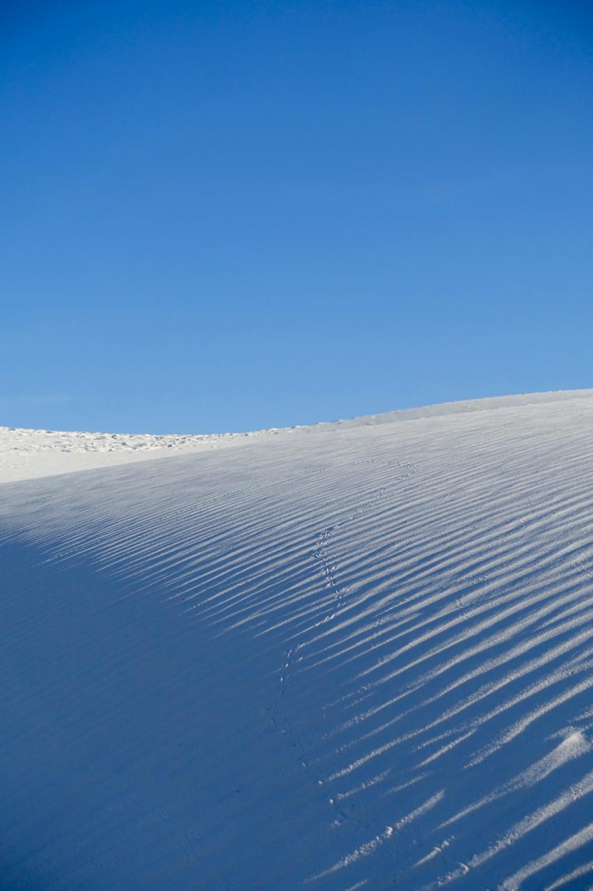 white sands iii.jpg