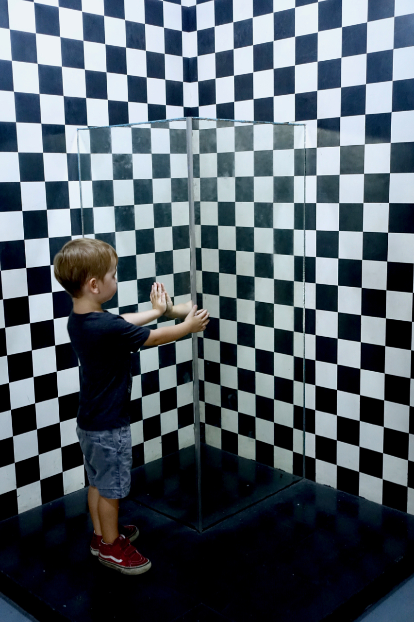 optical illusions lv.jpg