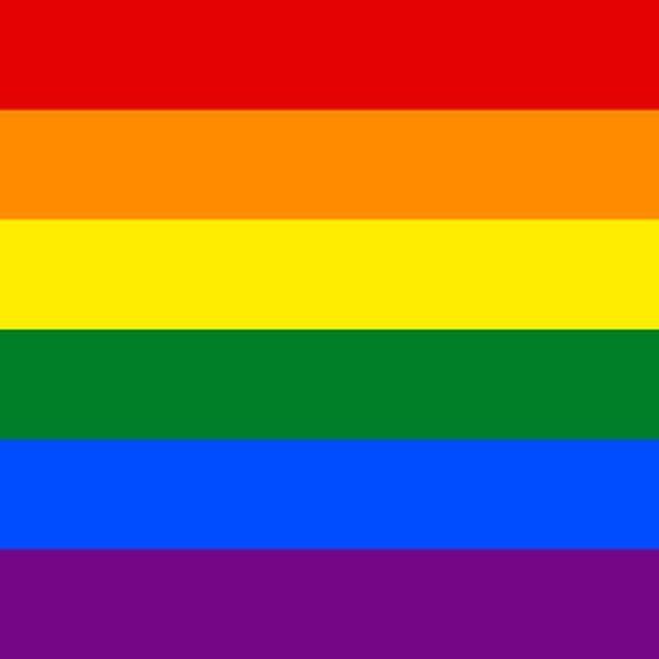 Rainbow LGBT Flag.jpg