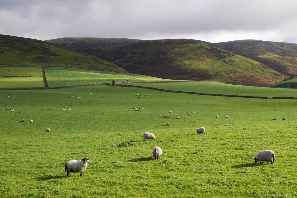Uplands around Nithdale
