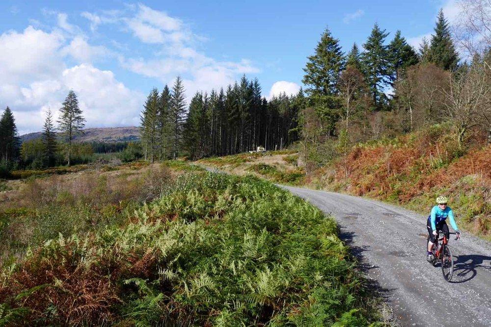 Raider Road