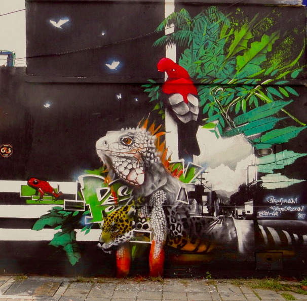 Felipe Ortiz and Percy Fortini-Wright, 2017.  20ft by 25ft mural in El Piloto, Cali, Colombia. Vinyl paint and spray paint.