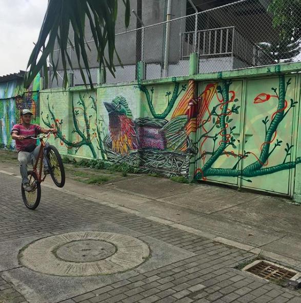 Mundo Letop, 2017.   Muro al Barrio project. Cali, Colombia.