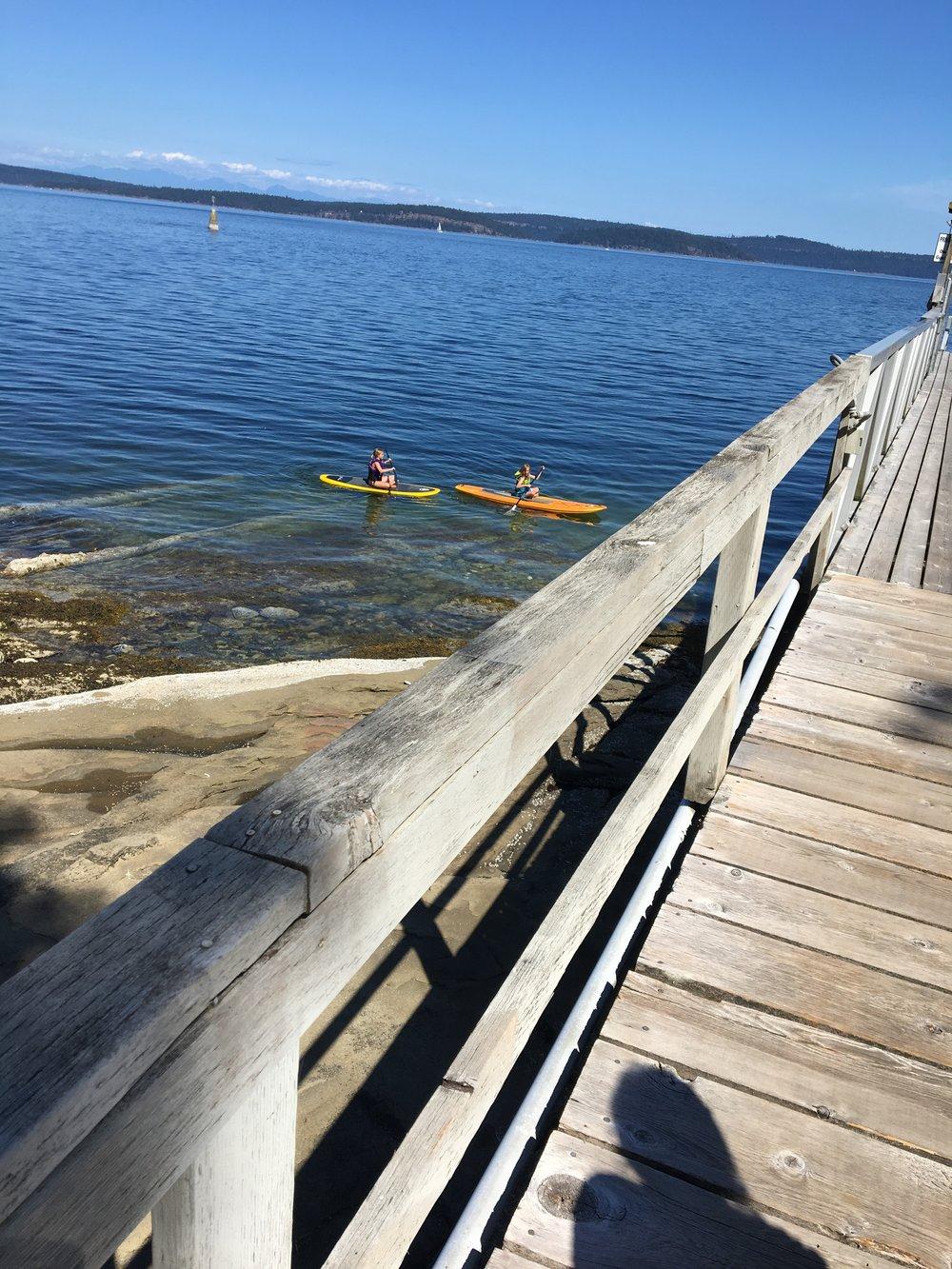 dock paddle boards.JPG