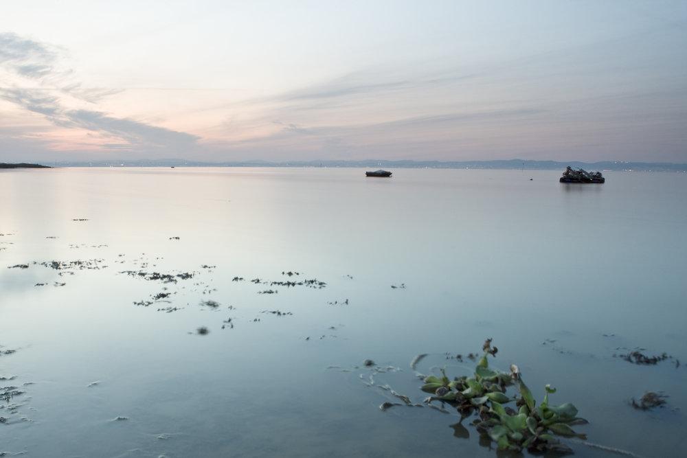 O Sítio das Hortas é um dos locais mais acessíveis do estuario do Tejo alcochete002.jpg