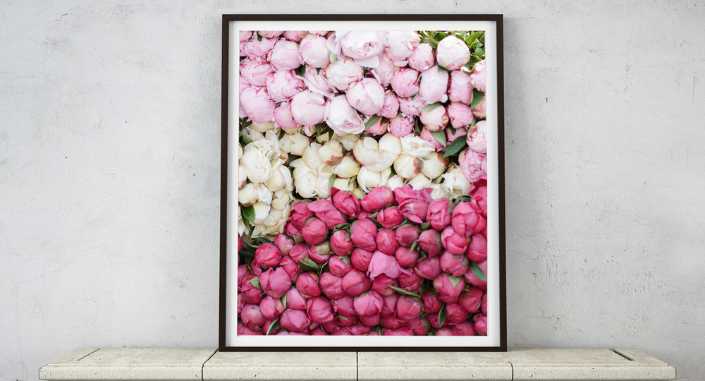 Tricolor Peonies in Paris Market Wall Art