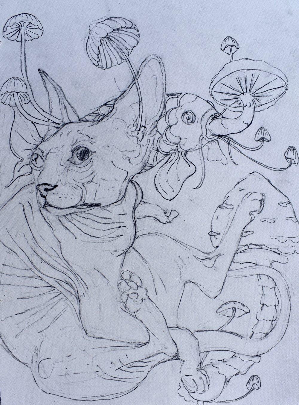 Silkscreen Sketch
