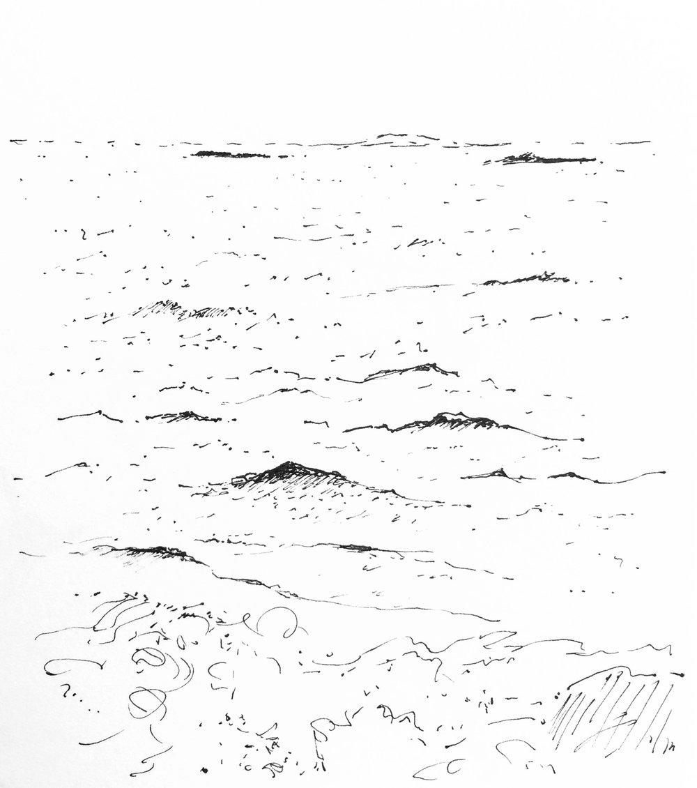 Monhegan - Little Waves and Seaweed