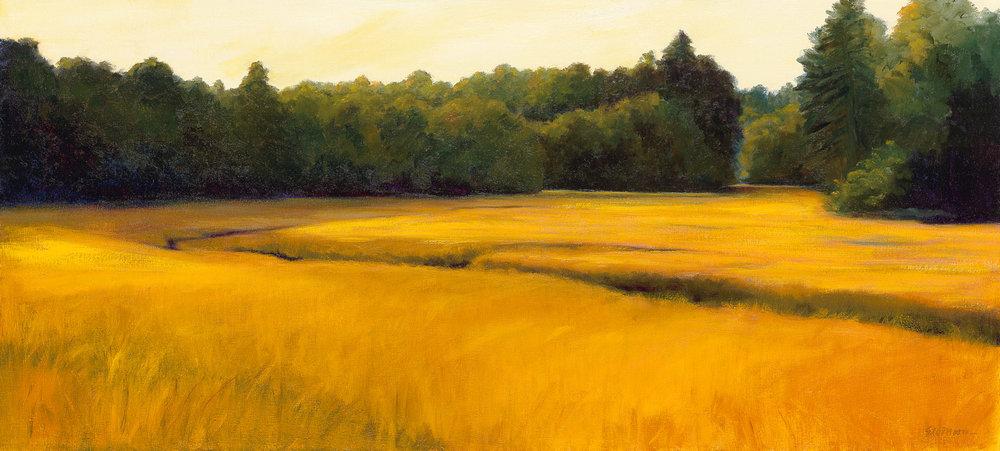 Durham Marsh