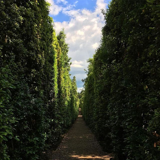 Who wouldn't want to get lost in the tree-lined alleys of the Boboli Gardens?