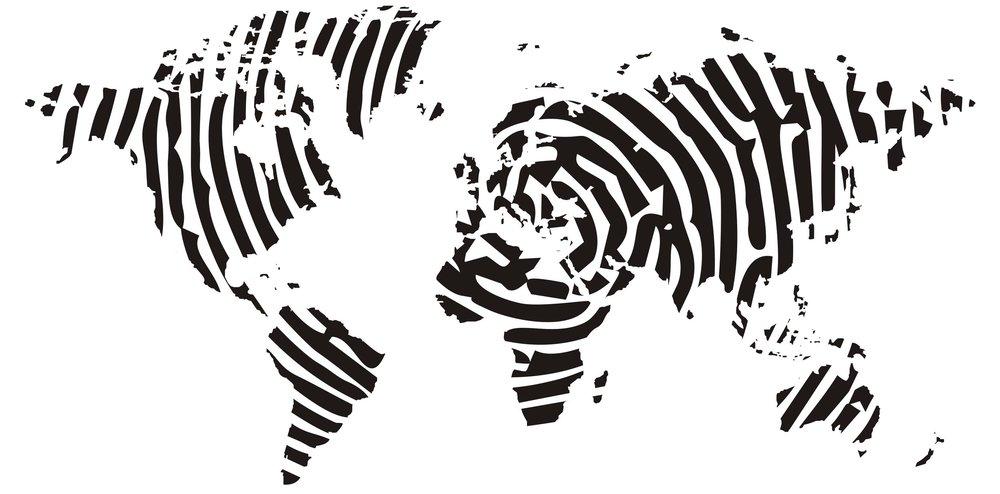 Zebra online dating