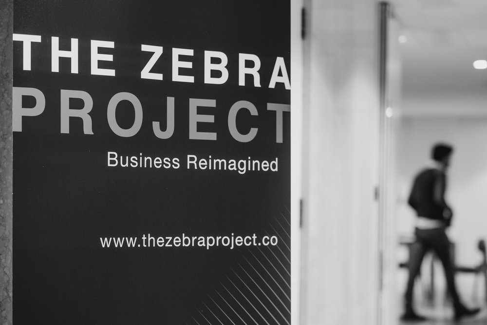 the-zebra-project_180118-283.jpg