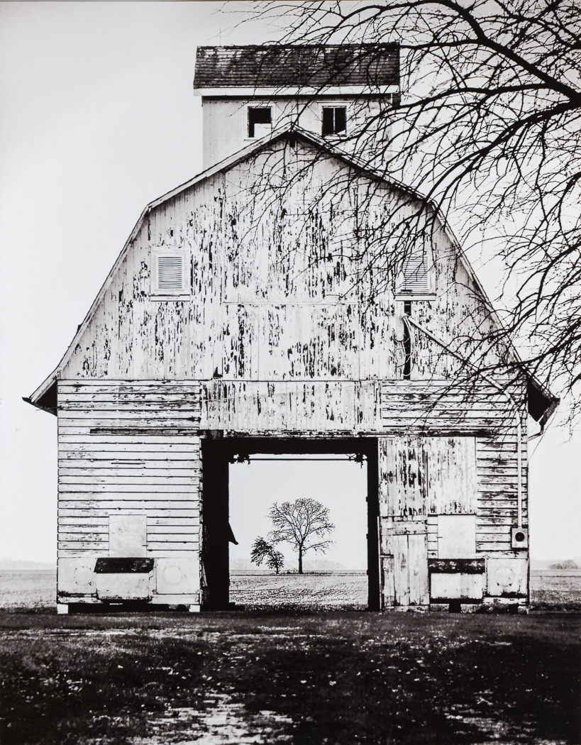 1st Place   Through the Barn   by Tricia Scott