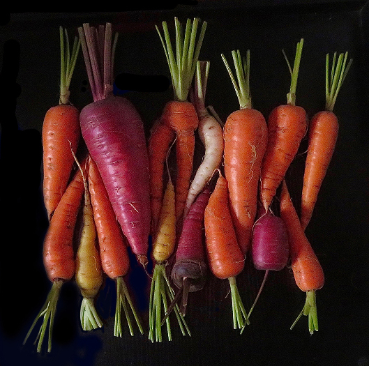 Carrots   by David Stone awarded Honorable Mention in Photo-Realistic