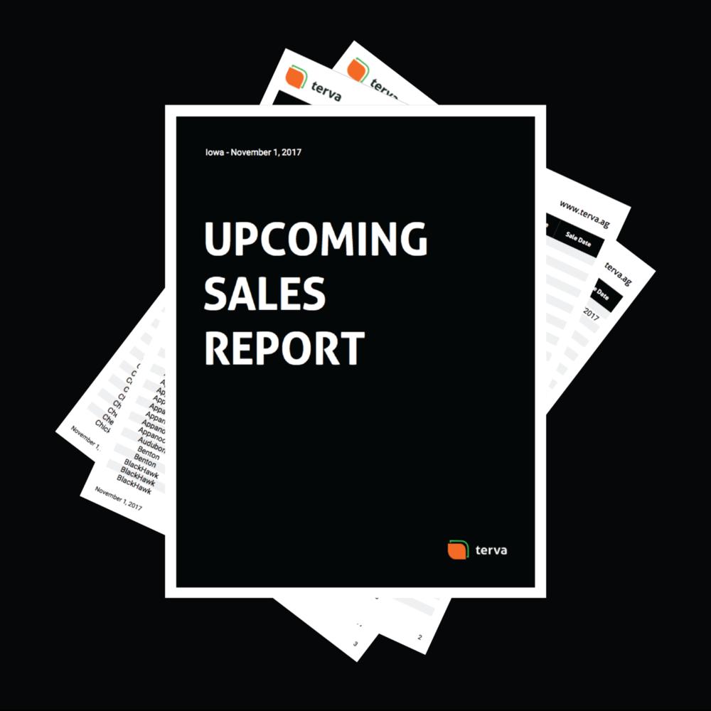 November - Upcoming Sales Report