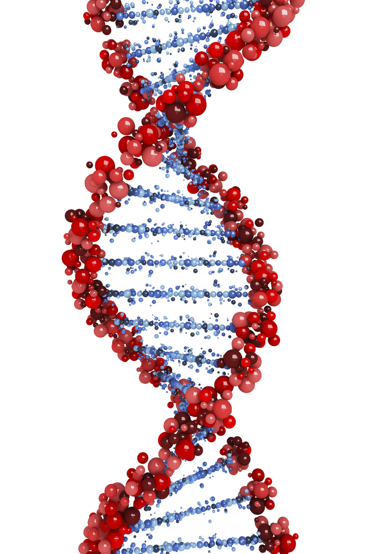 DNA%20NGS%20testing%201%20iStock_000046842874_Medium.jpg