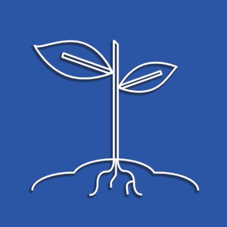 seedling1.png