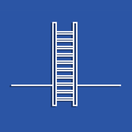 laddernewcolour.png