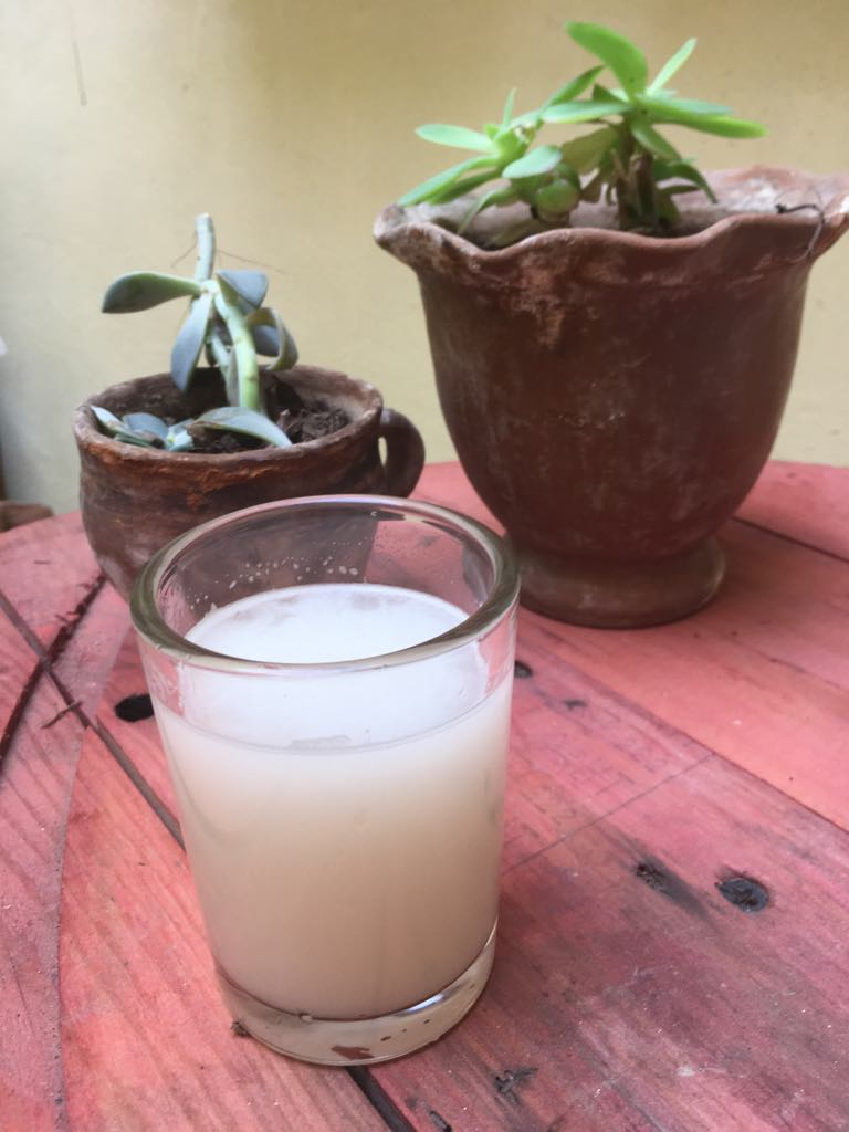 A glass of Pancho's sister's pulque.