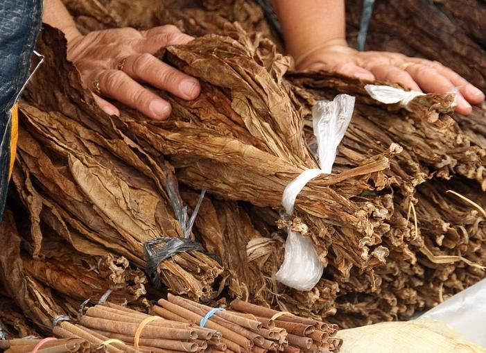 tobacco-1230840_960_720.jpg