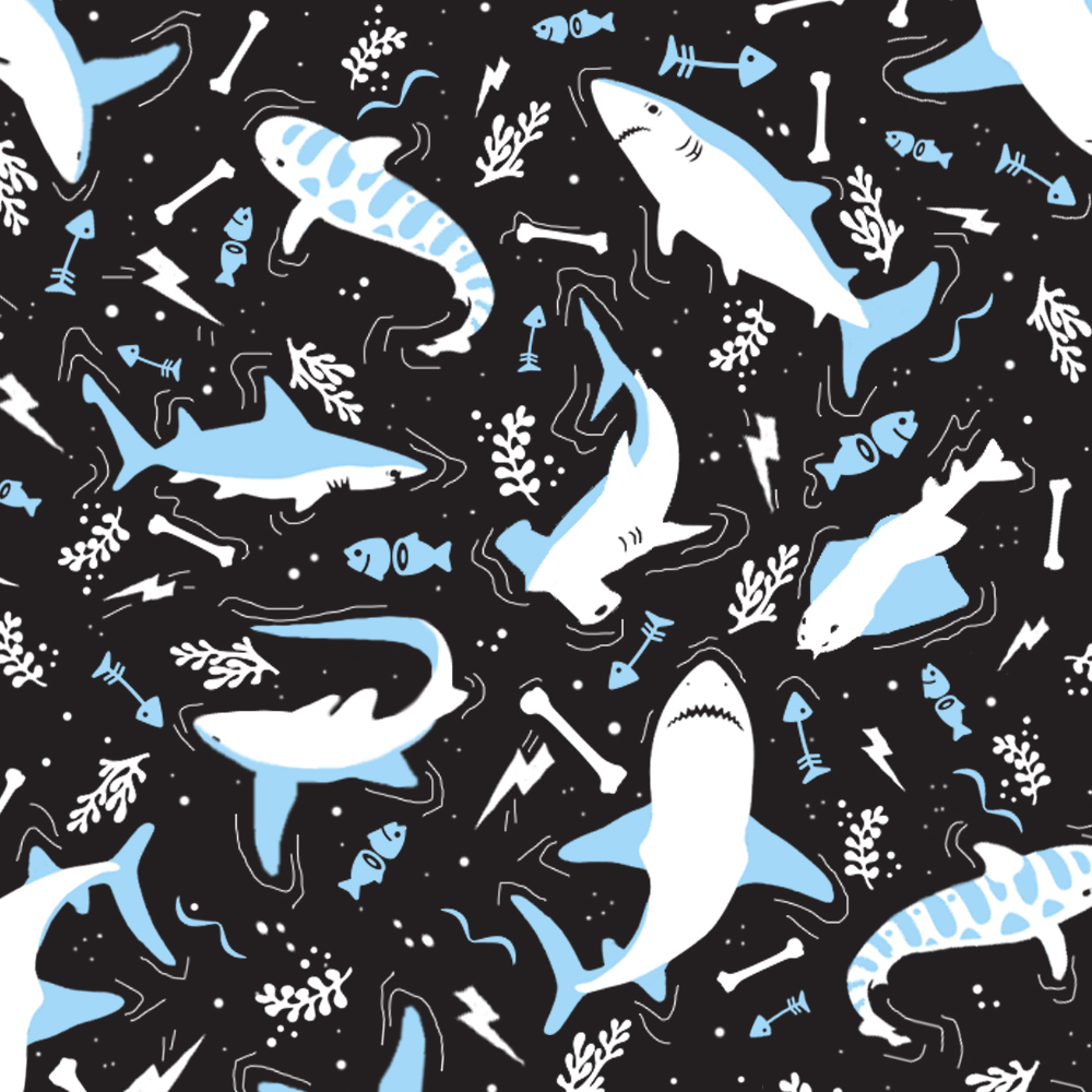 Shark illustration