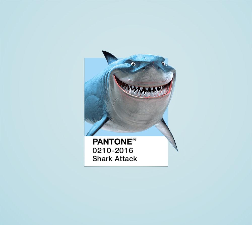 Shark pantone chip