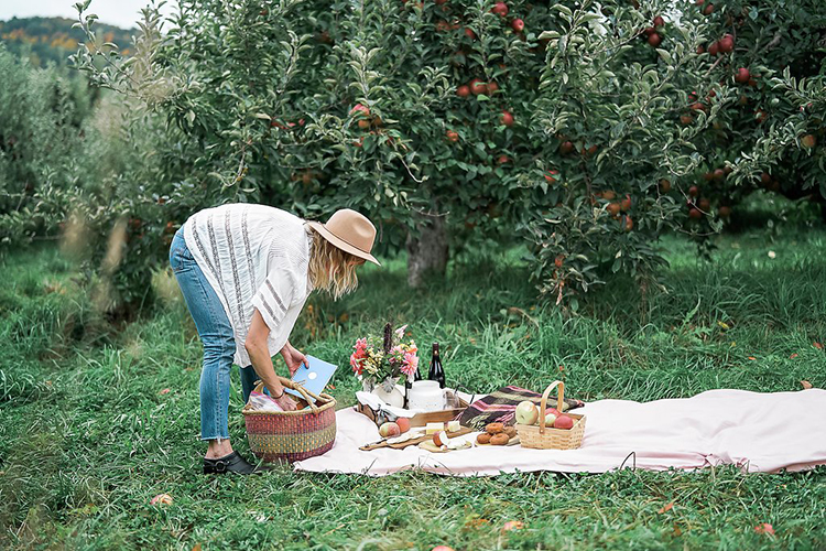 A Picnic with a Pinhole Press Sticker Book